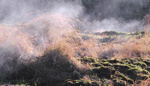 地熱蒸気が噴き出している